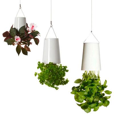 boskke sky planter mini ceramic ceiling garden triple pack. Black Bedroom Furniture Sets. Home Design Ideas